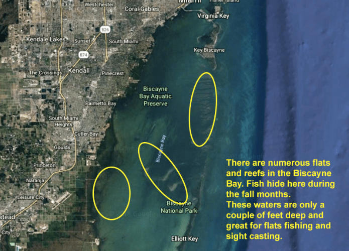 Biscayne Bay fishing spots