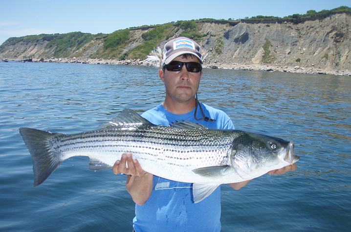 An angler holding a Striped Bass on a boat with the shore behind him