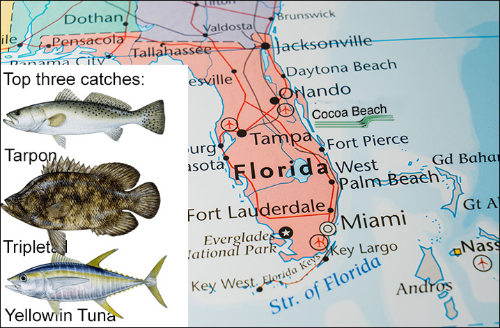 Map of Florida showing Cocoa Beach and top three fish species to catch there: Gator Trout, Tripletail, and Yellowfin Tuna