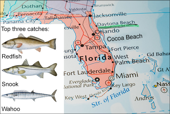 Map of Florida showing Daytona Beach and top three fish species to catch there: Redfish, Snook, and Wahoo