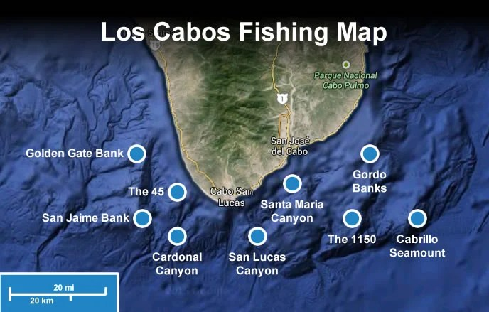 los cabos fishing grounds map