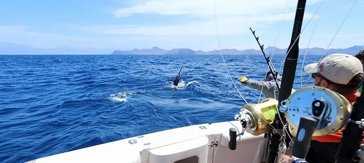 Anglers on a fishing charter from Miami fishing for Marlin in the Bahamas