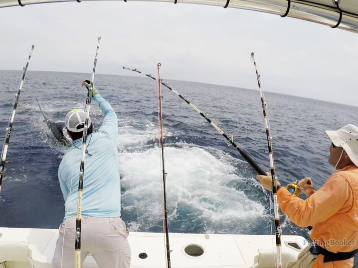 Playa del Carmen fishing: Anglers fighting Marlin in the Riviera Maya