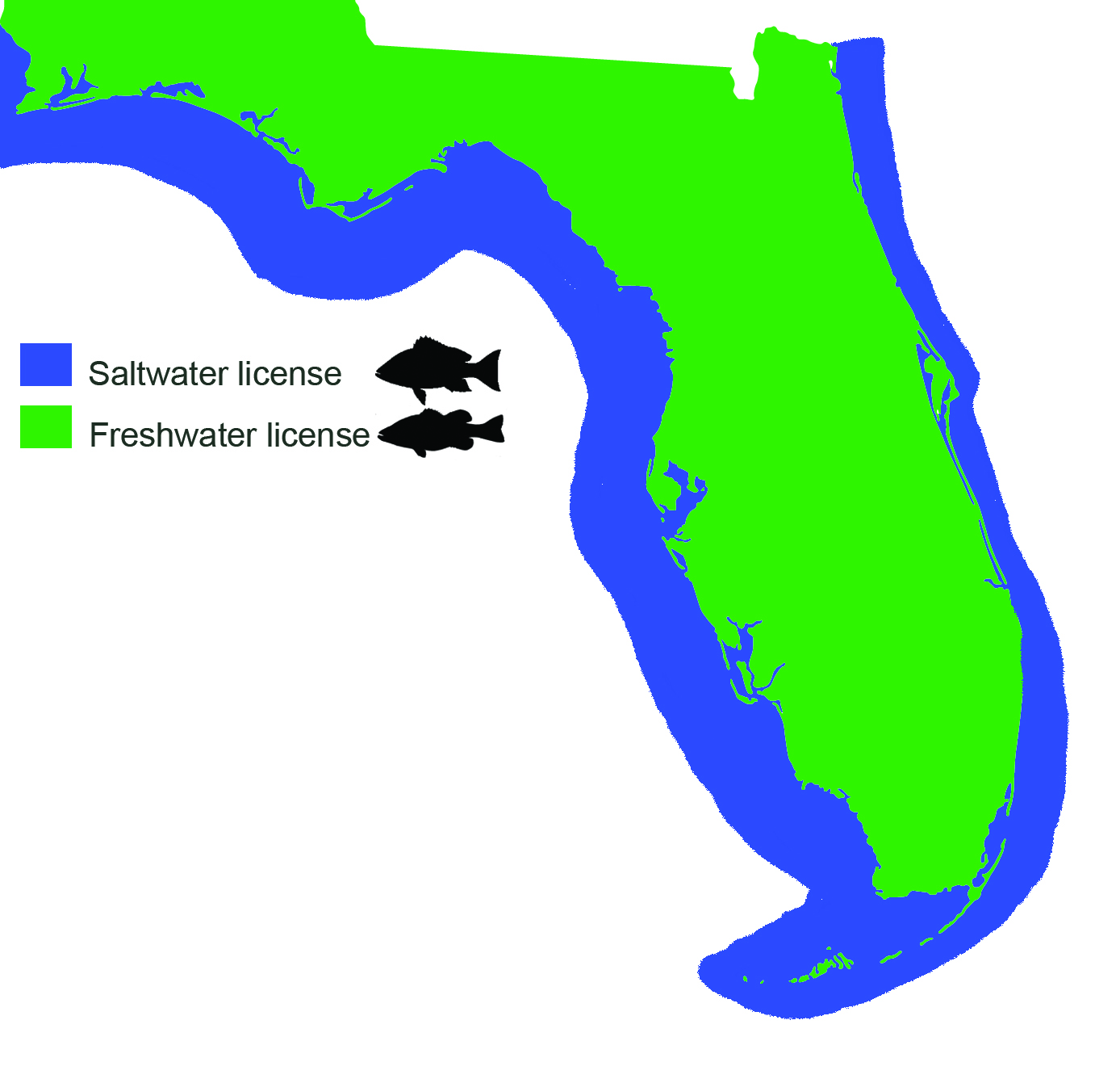Saltwater vs freshwater fishing licenses in Florida