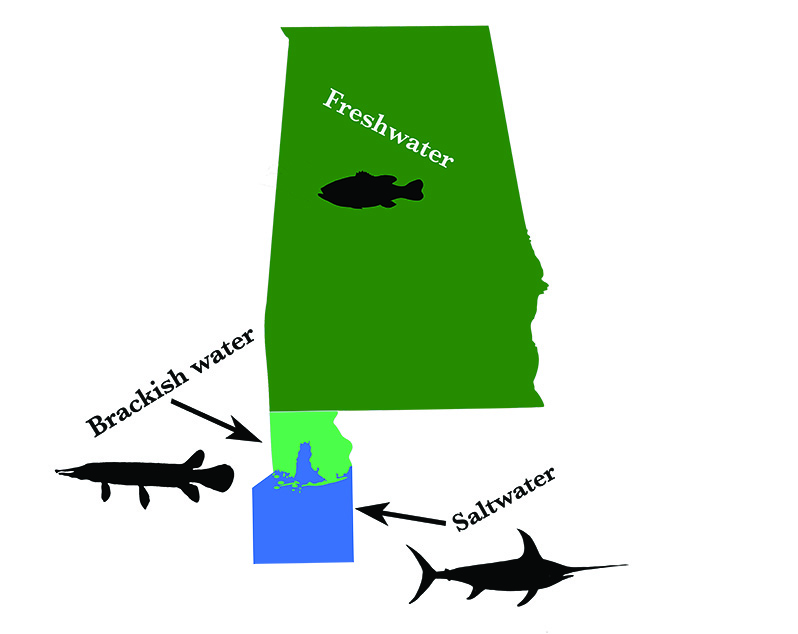map of freshwater and saltwater fishing areas in Alabama and gulf of mexico