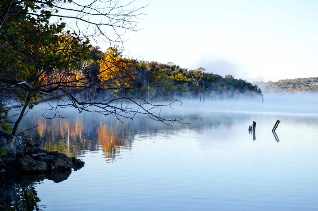 A shot of the mist on Table Rock Lake, with trees im the foreground and background