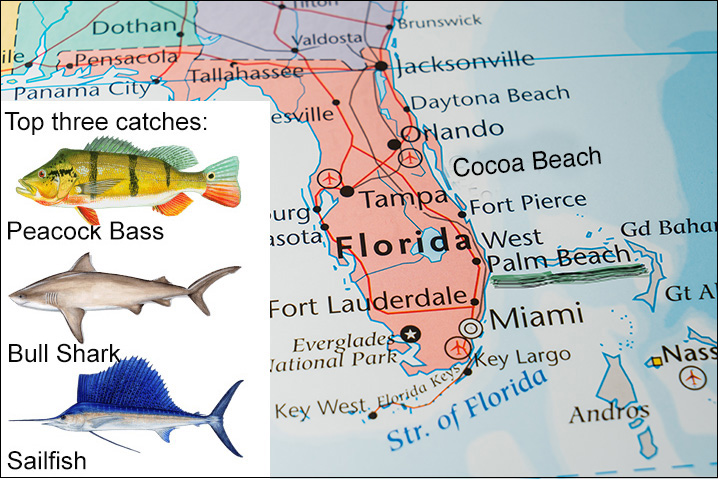 Florida map showing West Palm Beach and best three fish species to catch there: Peacock Bass, Bull Shark, and Sailfish