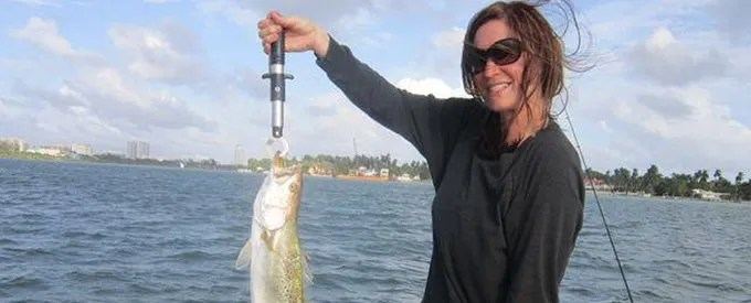 Miami beach fishing charters where paradise and fishing for Miami fishing charters