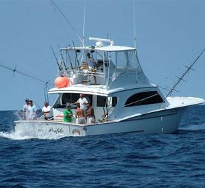 Over Under Sportfishing In Avalon New Jersey US Sport