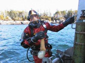 Geoduck Diving Rick Biggar
