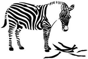 Zebra losing its stripes.