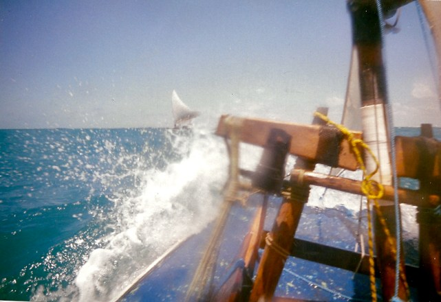 Sailing out on a jangada