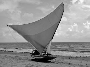 A Jangada has a large curved triangular sail.