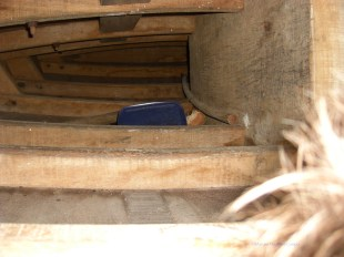 The space where the men sleep inside a jangada