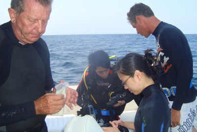 Diving off the Similans, Singapore Special package