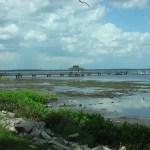 City-Pier-Green-Cove-Springs-3