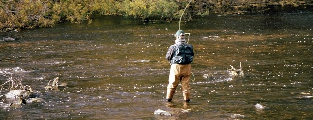 Best Hip Waders for Fishing