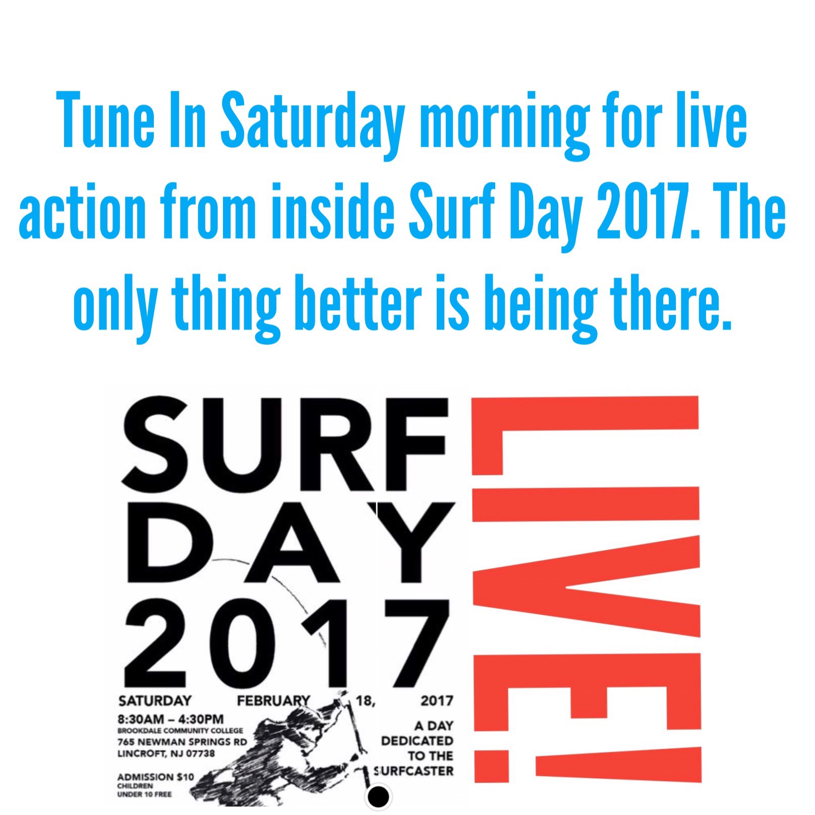 Surf day live lbi nj fishing report for Lbi fishing charters
