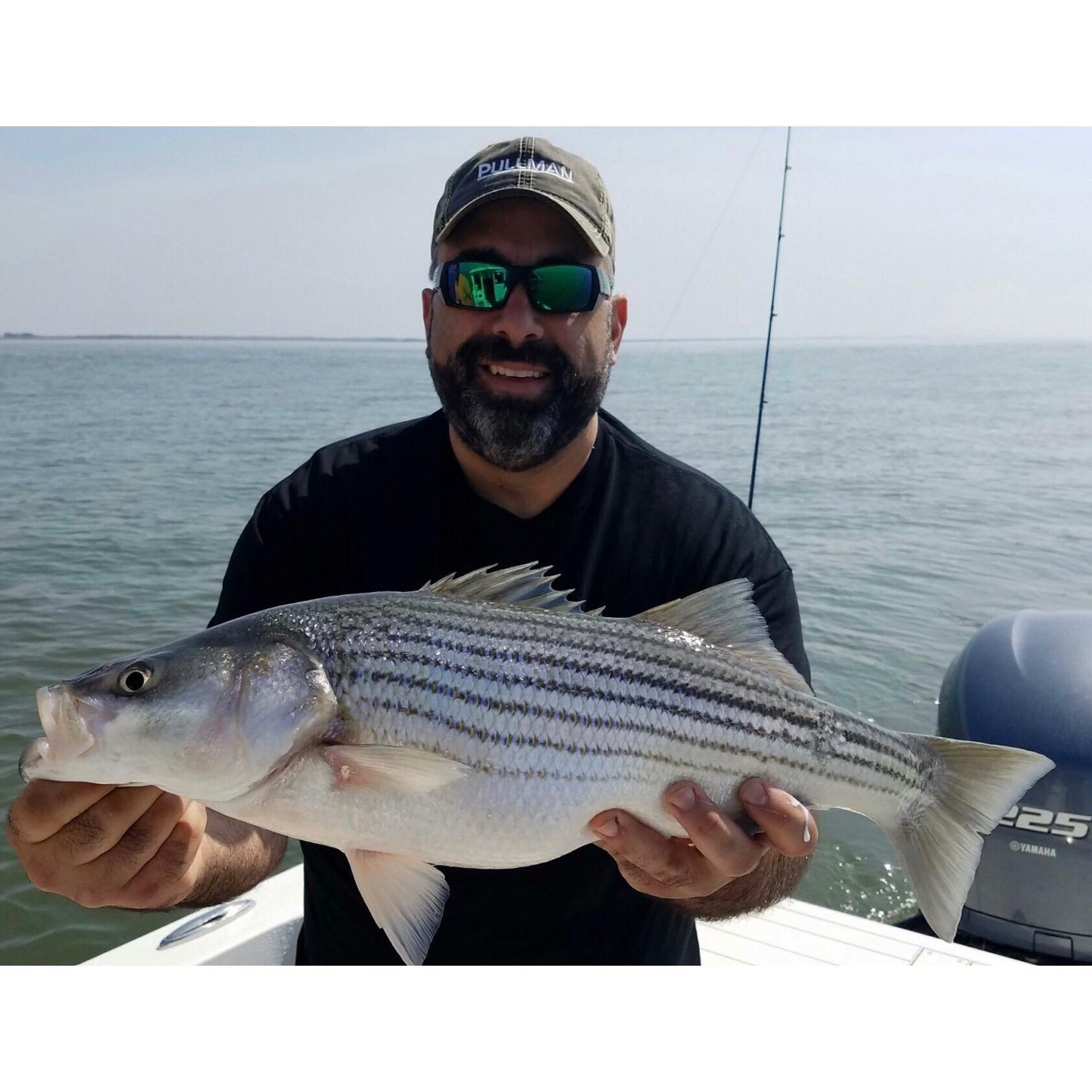 Nj fishing report archives lbi nj fishing report for Nj fishing reports now