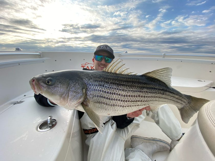 Store staffer Willie was in on the action today. Here's one of many striped bass that he caught and released.