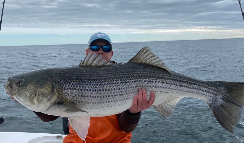 Captain Mike Greene aboard Luckey Stripes Charters has the tricks for finding big bass. This is another monster he caught this weekend.