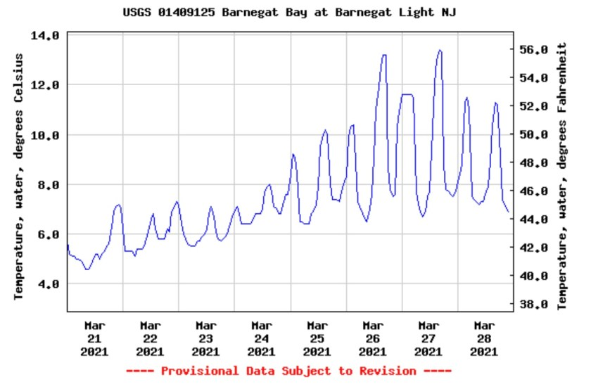 Looking at the Barnegat Bay Buoy it's great to see the water temperature warming trending