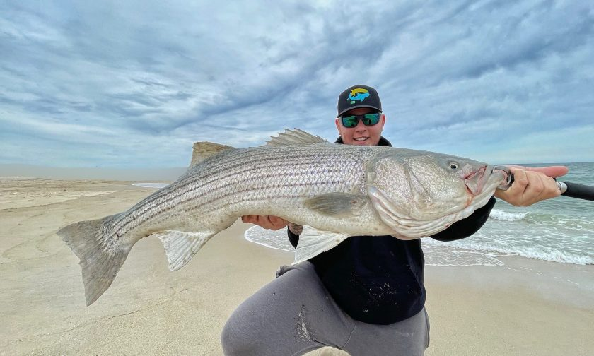 "Store Staffer Paulie, fishing the Northern LBI Surf was able to pick up this 42"" bass on Fish Head's Clams on Friday."