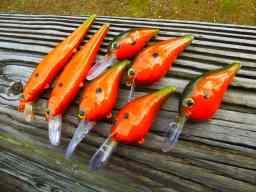 bassfishingcolorcraws