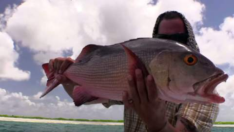 Latest Geobass Episode Takes College Student to Christmas Island