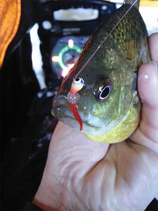 Of Innovation and Ice Fishing