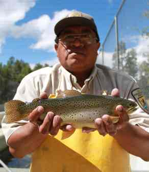 Bradley Clarkson White Mtn Apache Tribe member and USFWS apache trout biologist holds a handsome brood fish Alchesay Williams Creek Natl Fish Hatchery Craig Springer USFWS