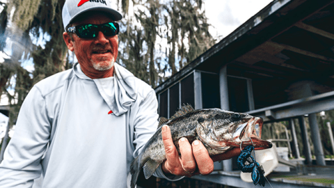 Z-Man® Rewrites Jig and Soft Plastic Rules with New Designs