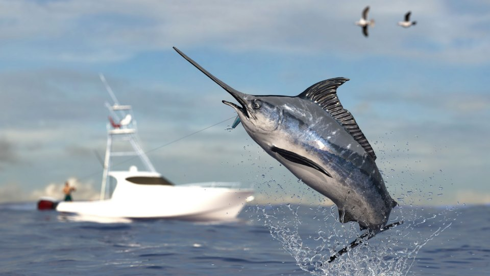 New Billfish Release Flags From Tigress Outriggers & Gear