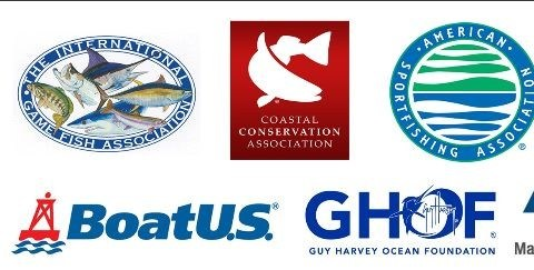 Forage Fish Conservation Act to Promote Robust Sportfish Populations