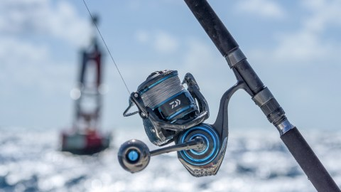 Daiwa's New Saltist MQ Spinning Reels Are Packed With Dynamite