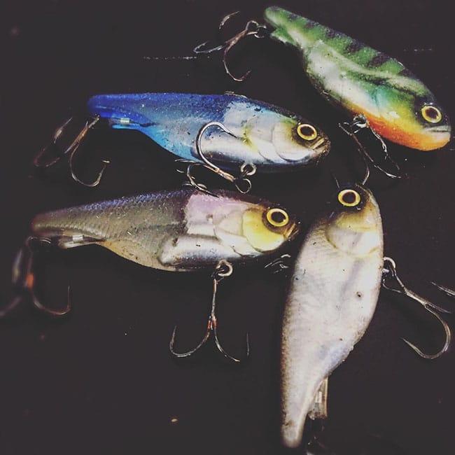 ปลายาง jack all