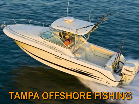 Tampa Offshore Fishing