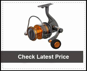 Okuma Raw II Spinning Reel Review