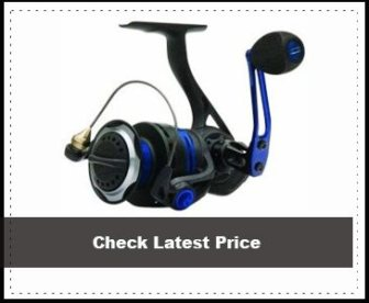 Quantum Smoke PT Inshore Spinning Reel Review