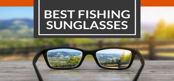 Best Polarized Sunglasses Reviews