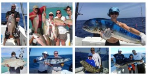 Contact Captain Don Reichert To Reserve Your Fishing Trip
