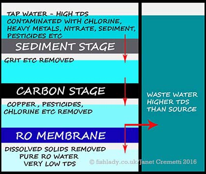What Is Reverse Osmosis Ro Water Why Would I Use Ro Fishlady
