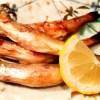 あなたが食べている「ししゃも」は代用魚「カラフトシシャモ」