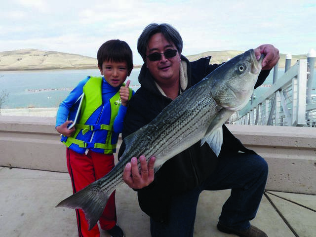 East bay lakes roundup for Fish sniffer forum