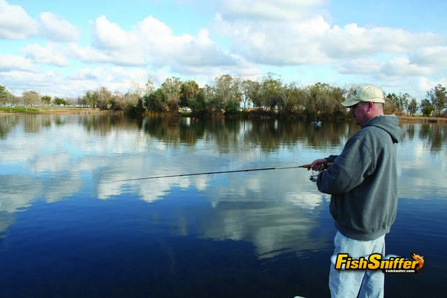 Rancho seco to host norcal trout anglers challenge event for Rancho seco fishing