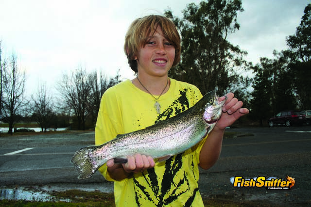 Rancho seco to host norcal trout anglers challenge event for The fish sniffer
