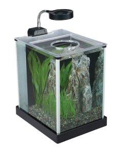 fluval spec desktop glass aquarium
