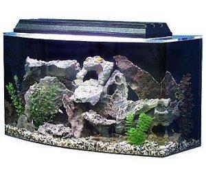 seaclear 36 gallon bowfront acrylic aquarium combo set