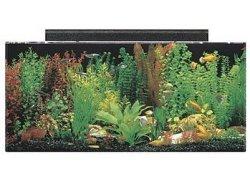 seaclear 40 gallon acrylic aquarium kit 2