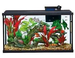 top fin essentials aquarium starter kit 29 gallon